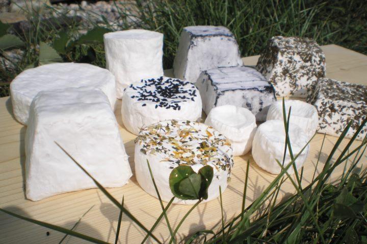 Kleines Käse-Sortiment